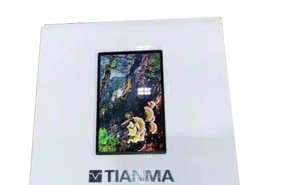 天马微电子携全新产品重磅亮相DISPLAY CHINA 2019