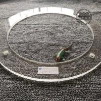 定制加工 半导体硅片刻蚀石英环 高纯半导体刻蚀石英环