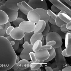 半导体硅片研磨用平板状氧化铝研磨微粉